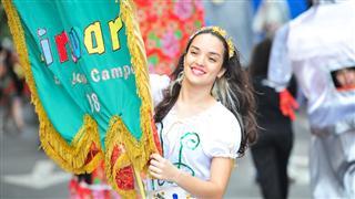 Imagens mostram o desfile do bloco Pirô Piraquara durante o carnaval de 2013