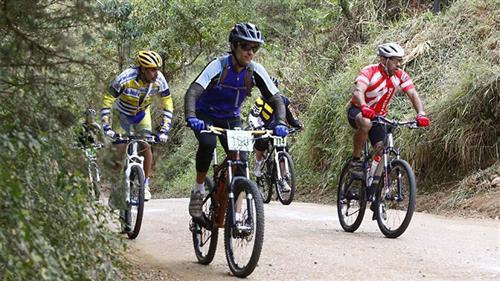 Mountain Bike em SFX em 2014