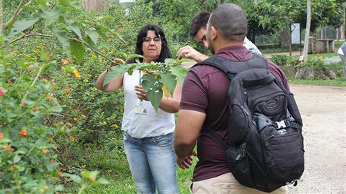 Educadores ambientais de Ilhabela conhecem o Parque da Cidade
