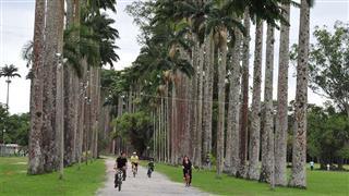 O Parque da Cidade em um paraíso verde repleto de obras arquitetônicas e de locais para visitação, como o Espaço 4 Patas e o Museu