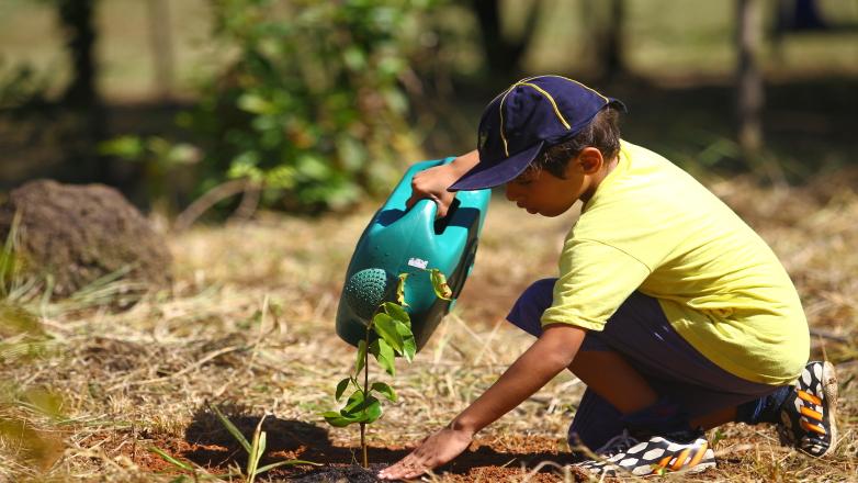 Alunos da Escola Municipal Waldemar Ramos participam do plantio de mudas na Vista Verde
