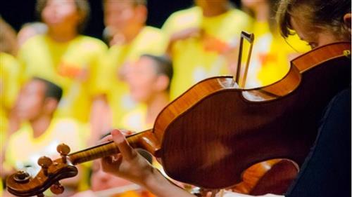 Criança toca violino