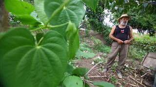 O aposentado Vicente Carlos Corrá, 65 anos, já participou do plantio de cerca de 200 mudas para reflorestar as margens do Alambari