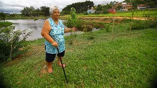 A dona de casa Therezinha Mariano Pinheiro, 74 anos, moradora do Pousada do Vale, é uma das principais incentivadoras e protetoras das árvores