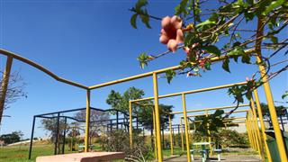 Os equipamentos serão alocados na área do Parque Ecológico Sergio Sobral de Oliveira e terão custo zero